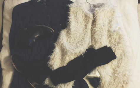 Post #6: How to style fur