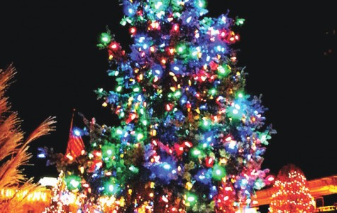 Massapequa Park Village Tree Lighting was once again a success
