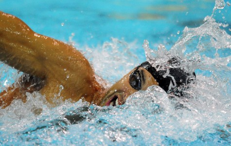 London Olympics 2012: the return of Michael Phelps