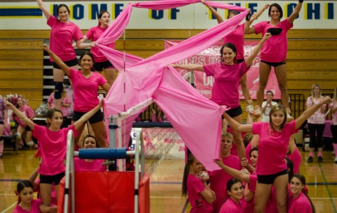 MHS goes pink, digs for a cure