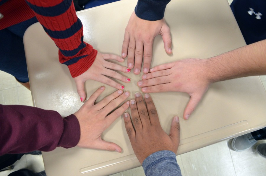 Garner, Brown cases raise questions on diversity at MHS