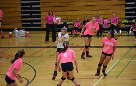 The annual Dig Pink girls volleyball game managed to raise $585 this year for patients.